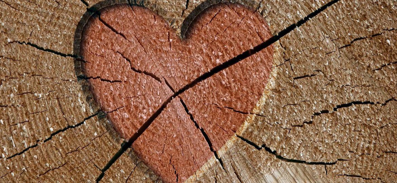 corazon,-madera,-grietas-209615
